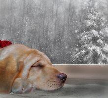 Dreamin' of a White Christmas 2 by Lori Deiter