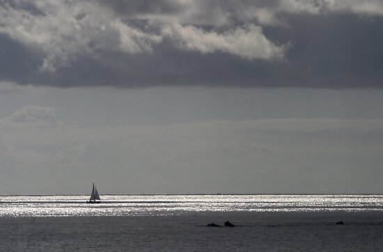Lonely Sailer by SWEEPER