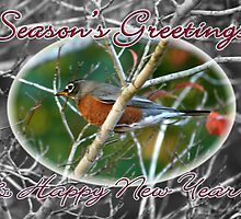 Season's Greetings & Happy New Year Card ~ Robin by silverdew
