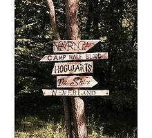 Which path will you take? Photographic Print