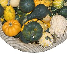 Gourds in a Basket at a Farmer's Market by etienjones