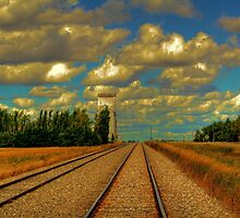 Leading Lines by Larry Trupp