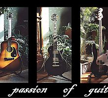 The Passion of Guitars by PhotogeniquE IPA