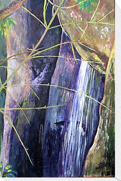 Falls at St Bernards Mt.Tamborine by Virginia McGowan