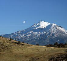 Mount Shasta by Kimberly Palmer
