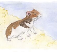 Hamster by Linda Ursin