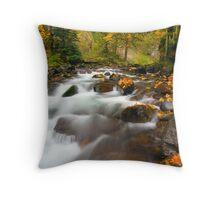 Autumn Passages Throw Pillow