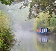 The Basingstoke Canal by Steve  Liptrot