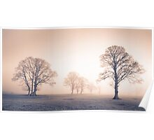 Tywi Valley Trees 2 Poster