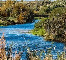 Artwork - Winding River by ncp-photography