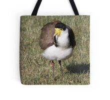 "Masked Lapwing (Spur-winged Plover) ~ ""Dagger Drawn""  Tote Bag"