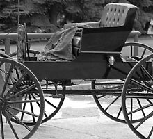 Amish Buggy 2 by Kathleen Struckle