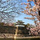 Osaka castle by Robyn Lakeman