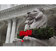 Lion Sculpture, Holiday Decorations, New York Public Library, New York City Photographic Print