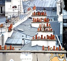 Cat on a Paris Roof by Caprice Sobels