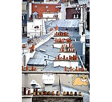 Cat on a Paris Roof Photographic Print