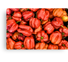 Red Habanero Peppers Canvas Print