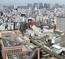 Tokyo, Japan (Poster size panorama!) by Roger Barnes