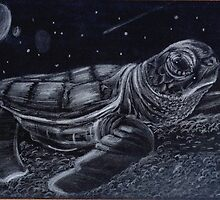 Night Turtle by Kanimations