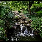 Japanese Garden Ft. Worth, Tx by Jamaboop