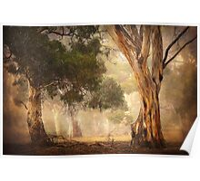 Gum Trees - Anakie Poster