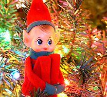 Elf by Sheryl Kasper