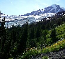 Mt. Baker Washington - North Face by bnmchone