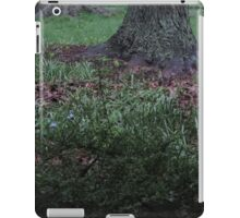 Rainy Day Landscape iPad Case/Skin