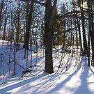 A Snow Scene by Larry Llewellyn