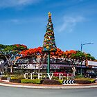 Christmas in Cleveland Qld Austalia by Beth  Wode