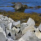 Rocky Shore by rglehmann