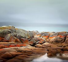 Bay of Fires 4 by wallarooimages