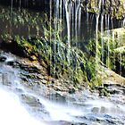 Weeping Rock by umauma