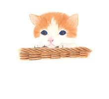 Kitten in a Basket by Linda Ursin