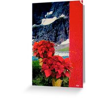 Holiday Two Pots Greeting Card