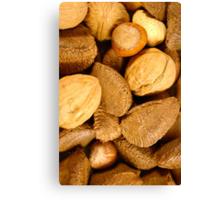 Mixed Nuts - Vertical Canvas Print