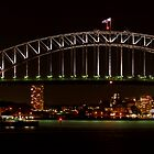 Harbour and Opera House Close Panorama  by DavidIori