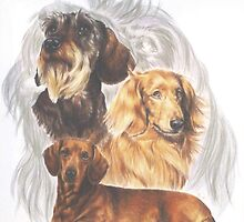 Dachshund w/Ghost by BarbBarcikKeith