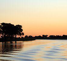 zambezi at dusk by samantha jefferson