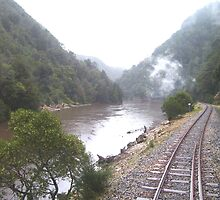 travelling on the steam train from Strahan to Queenstown, Tasmania by gaylene