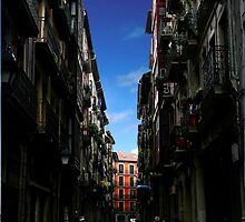 Bilbao Oldtown by Gavin King