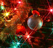 Ornament With Lights by Patricia Betts