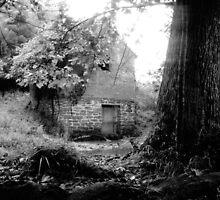 Etter Springhouse Warren County Tennessee by © Joe  Beasley IPA