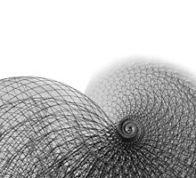 Wire and Line Snail Spiral Illustration by etienjones