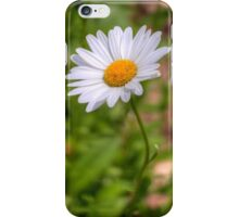 Daisy 2 iPhone Case/Skin