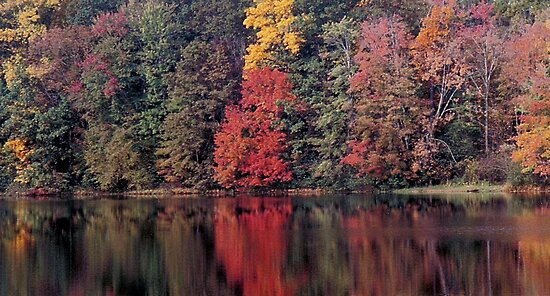 autumn in Lower Michigan #2 by mikrin