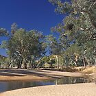 Waterhole in the outback by sasjacobs
