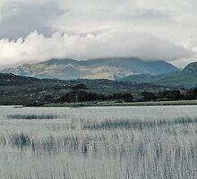 Loch Maree by TimHatcher
