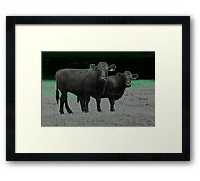 Cley Cows C Framed Print