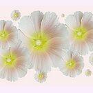 Groovy Flowers by Christine Lake